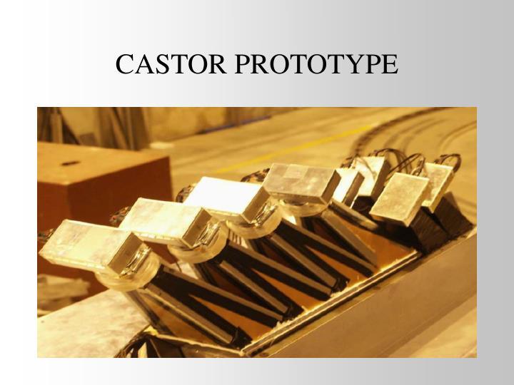 CASTOR PROTOTYPE