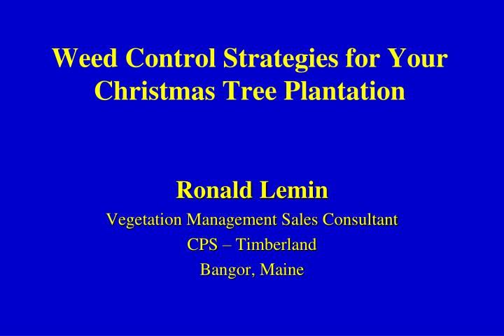 Ppt Weed Control Strategies For Your Christmas Tree Plantation