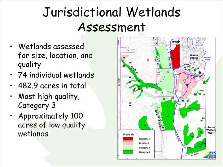 Jurisdictional wetlands assessment