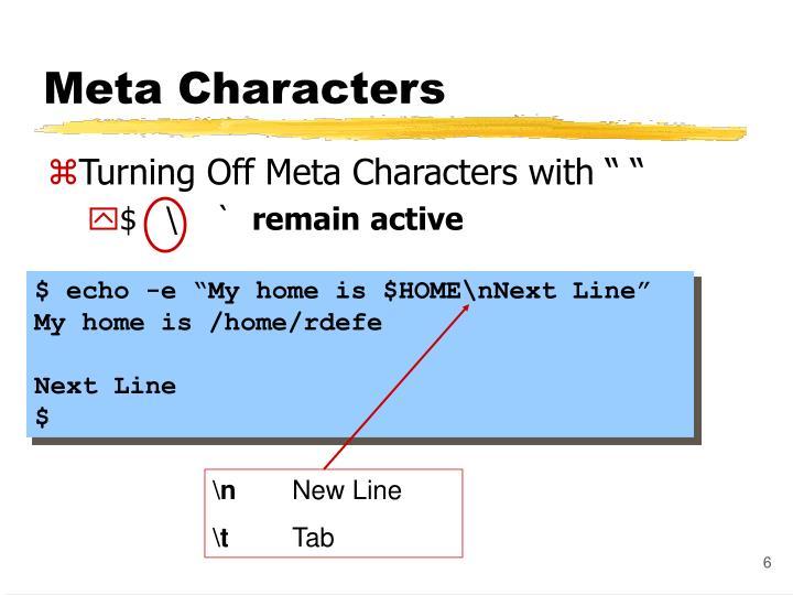 Meta Characters