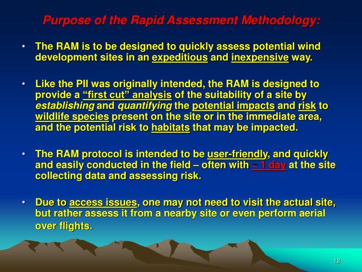 Purpose of the Rapid Assessment Methodology: