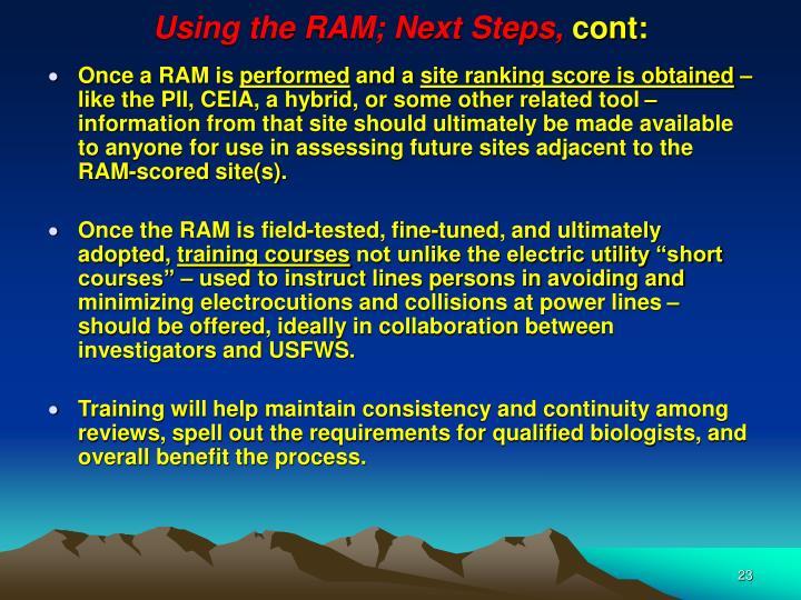 Using the RAM; Next Steps,