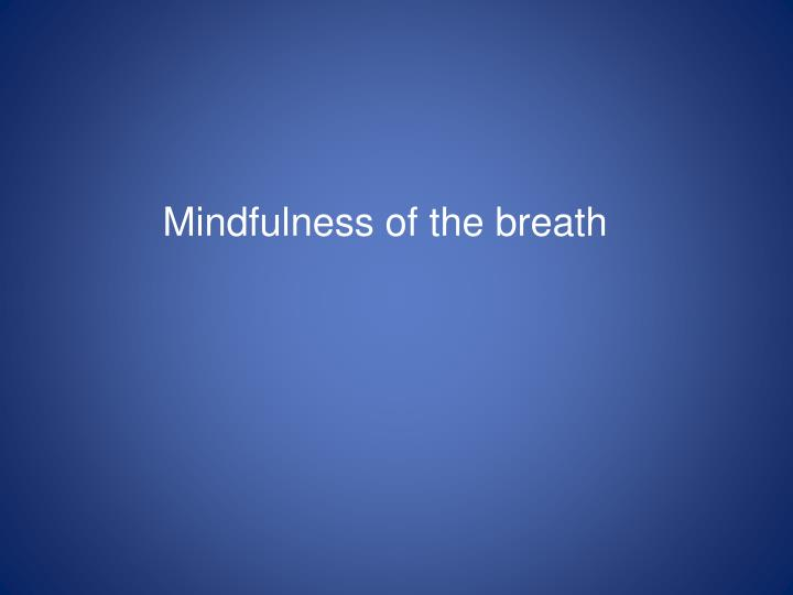 Mindfulness of the breath