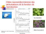 cibles neuroendocriniennes des perturbateurs de la fonction de reproduction3
