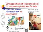 d veloppement et fonctionnement du syst me reproducteur femelle3