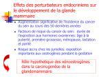 effets des perturbateurs endocriniens sur le d veloppement de la glande mammaire