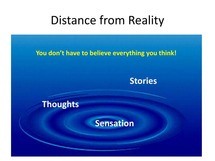 Distance from Reality