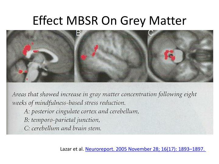 Effect MBSR On Grey Matter
