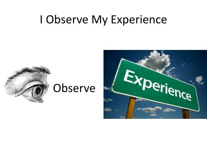 I Observe My Experience