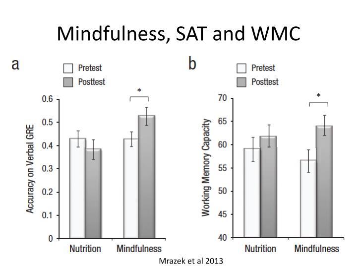 Mindfulness, SAT and WMC