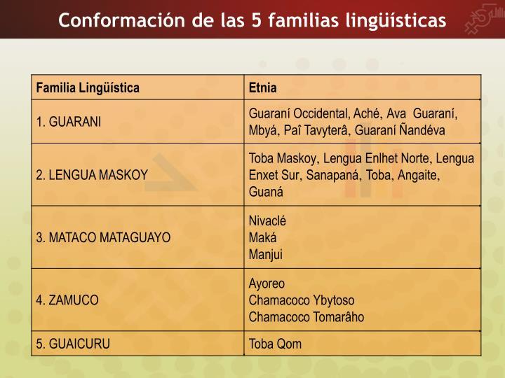 Conformación de las 5 familias lingüísticas