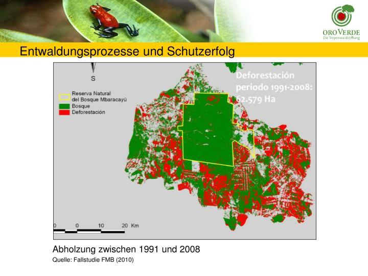 Entwaldungsprozesse und Schutzerfolg