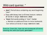 wild card queries1