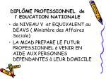 dipl me professionnel de l education nationale