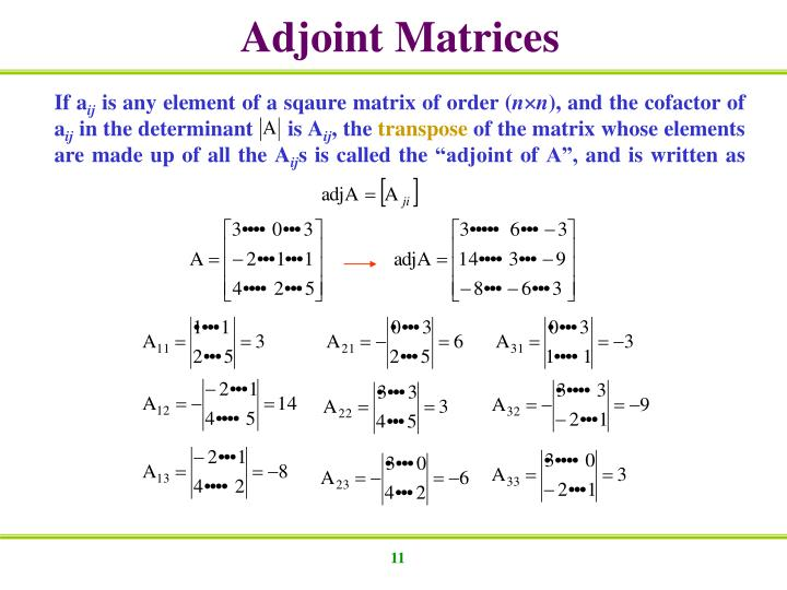 Adjoint Matrices
