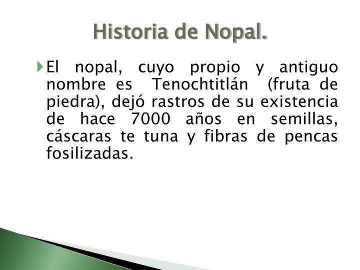 Historia de Nopal.
