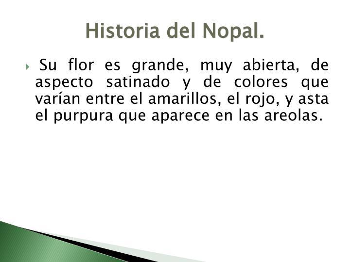 Historia del Nopal.
