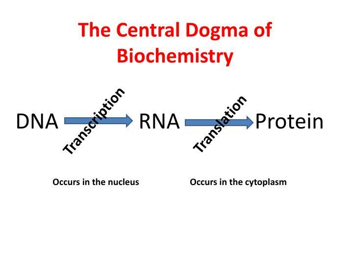 The Central Dogma of Biochemistry