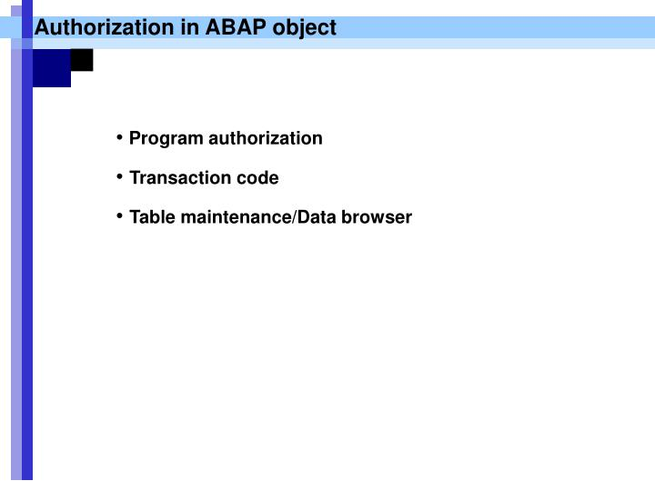 Authorization in ABAP object