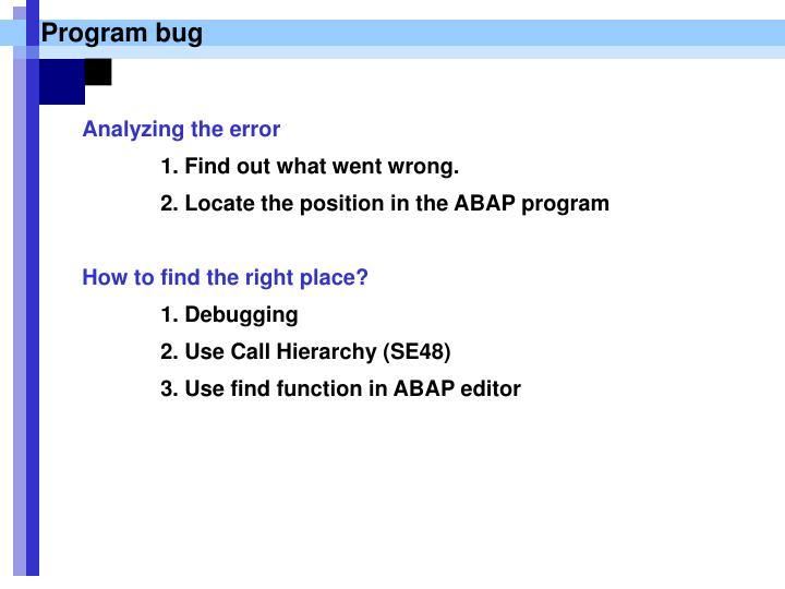 Program bug