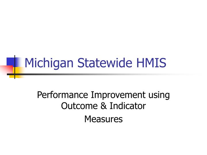 michigan statewide hmis n.