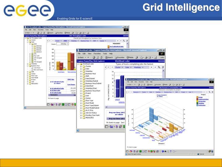 Grid Intelligence