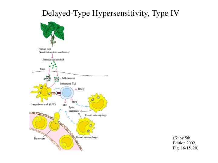 Delayed-Type Hypersensitivity, Type IV