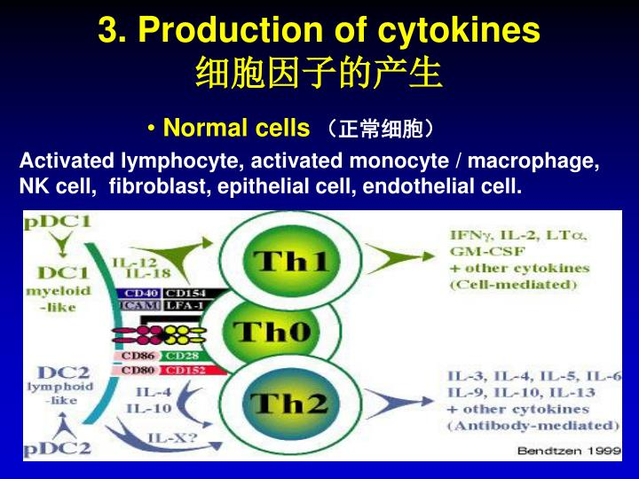 3. Production of cytokines