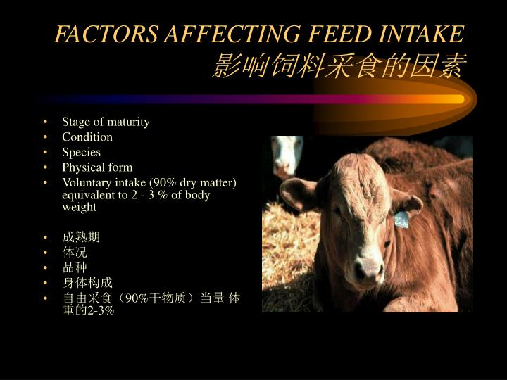 FACTORS AFFECTING FEED INTAKE