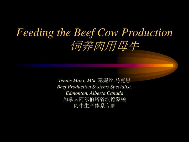 Feeding the beef cow production