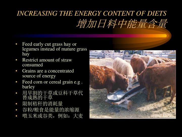 INCREASING THE ENERGY CONTENT OF DIETS