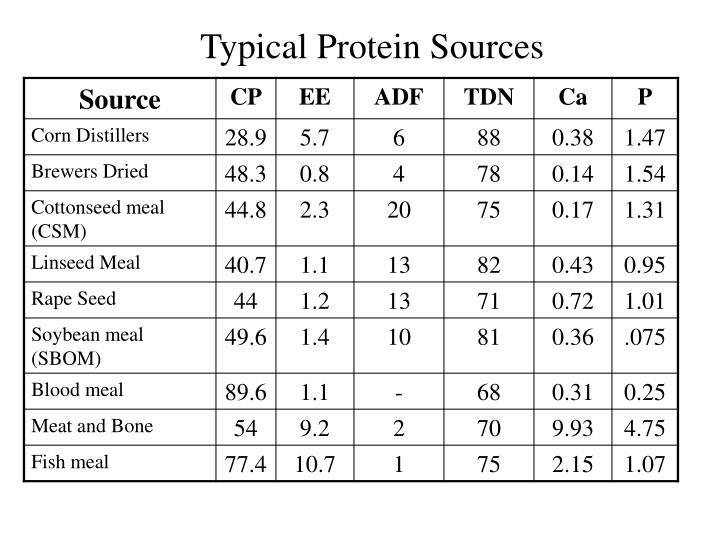 Typical Protein Sources