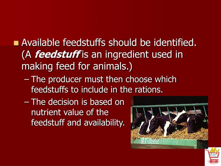 Available feedstuffs should be identified. (A