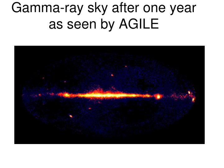 Gamma-ray sky after one year as seen by AGILE