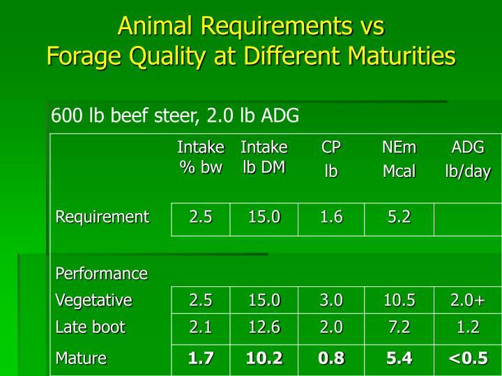 Animal Requirements vs