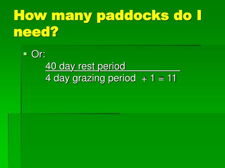 How many paddocks do I need?