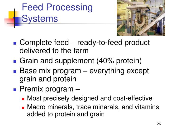 Feed Processing Systems