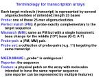 terminology for transcription arrays