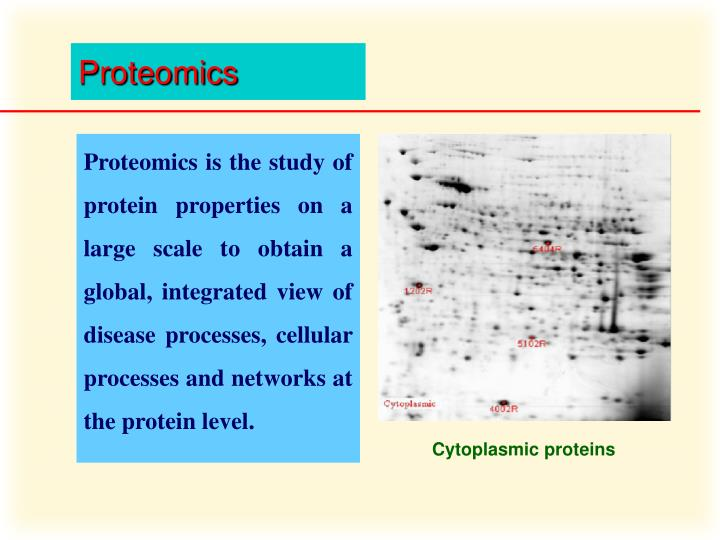 Proteomics is the study of protein properties on a large scale to obtain a global, integrated view of disease processes, cellular processes and networks at the protein level.