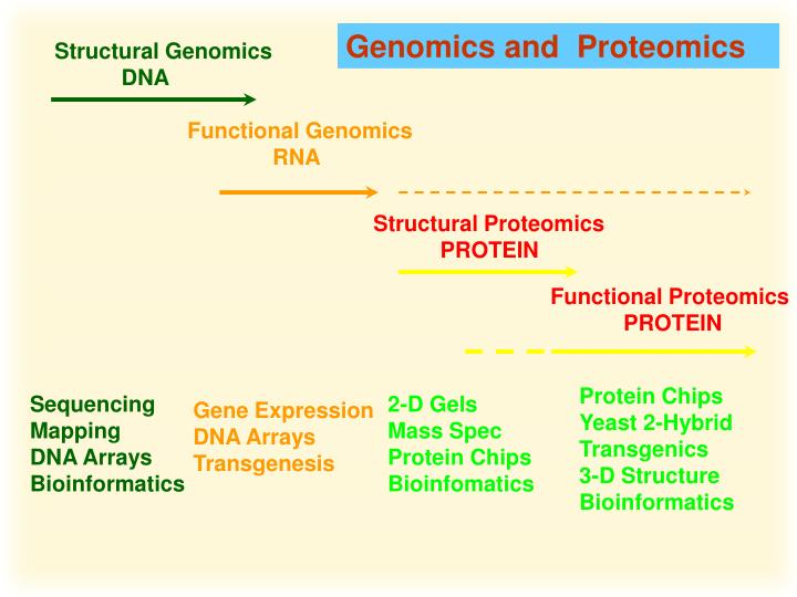 Genomics and  Proteomics