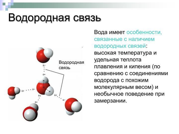 Водородная связь