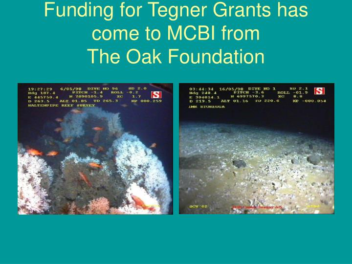 Funding for Tegner Grants has come to MCBI from