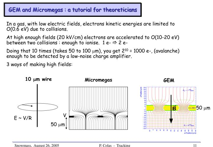 GEM and Micromegas : a tutorial for theoreticians