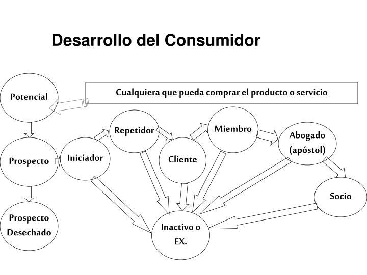 Desarrollo del Consumidor