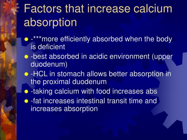 Factors that increase calcium absorption