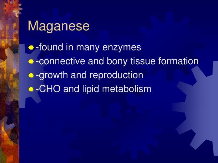 Maganese