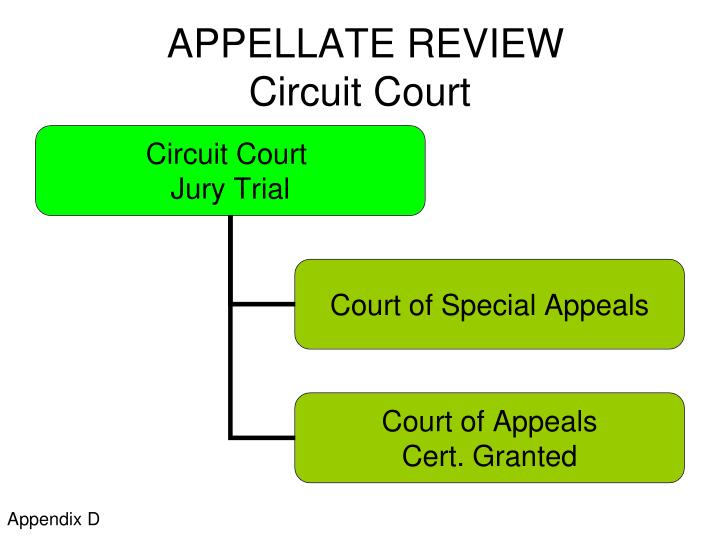 APPELLATE REVIEW