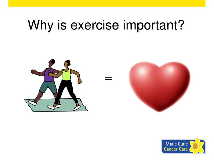 why is exersice important Strengthening the heart and other muscles isn't the only important goal of exercise muscles, joints, and mind, it's easy to see why exercise is wise.
