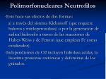 polimorfonucleares neutrofilos5
