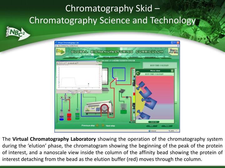 Chromatography Skid –